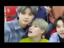 This video of chenle and jungwoo makes my uwu meter overheat