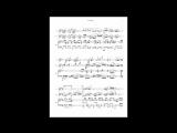 Composer Fabricio Gatta - El Ofendido [flute_guita_rpiano]