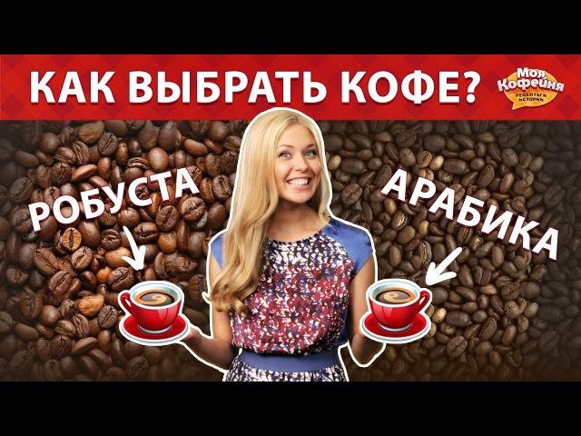 Как выбрать кофе Арабика и Робуста. Советы от Моя Кофейня и JS Barista Training Center