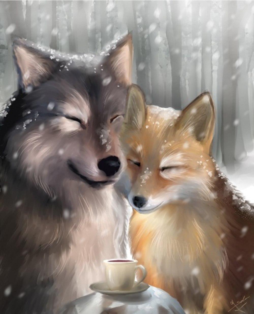 Фотки лис и волк 3 фотография