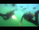 BBC «Океаны (8). Северный Ледовитый океан» (Познавательный, природа, путешествие, 2008)