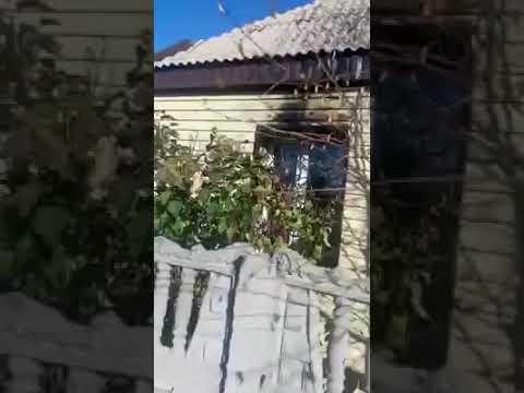 КАЗАХСТАНСКОМУ ПРАВОЗАЩИТНИКУ ЕЛЕНЕ СЕМЕНОВОЙ ПЫТАЛИСЬ ПОДЖЕЧЬ ДОМ!