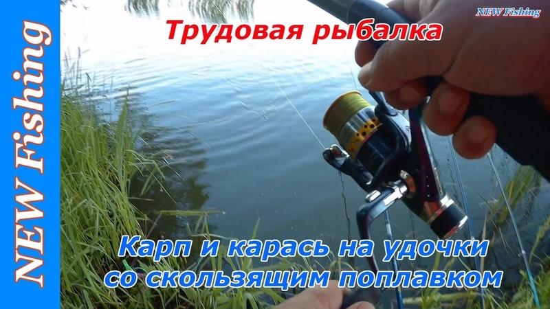 Трудовая рыбалка. Карп и карась на удочки со скользящим поплавком.