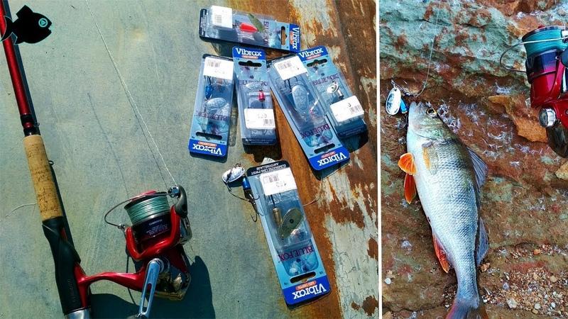 Blue Fox Vibrax и SHIMANO CATANA DX 270 UL 1-11, SHIMANO CATANA 2500 FC \ Тест вращающихся блесен