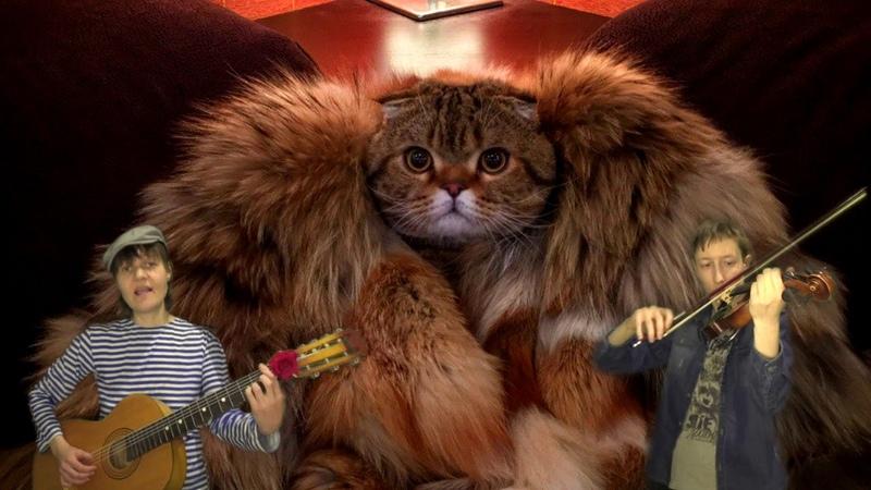 На Дерибасовской открылася пивная, танго Эль Чокло и котики