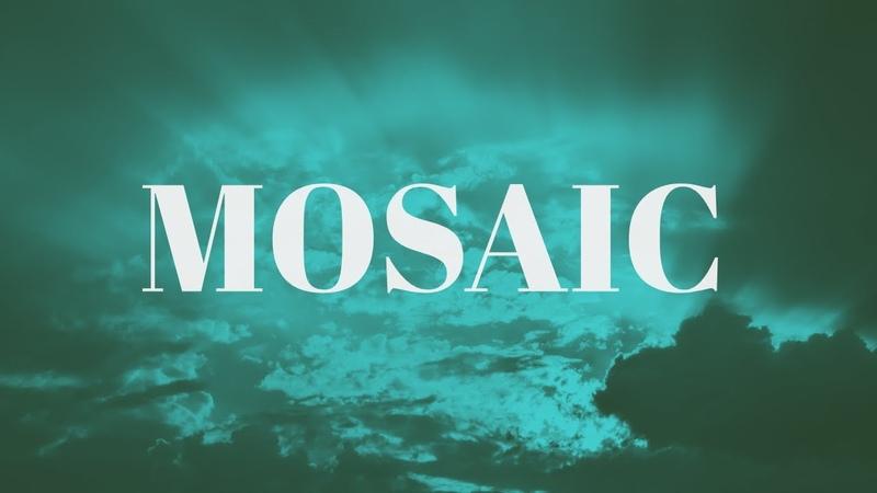 Mosaic - FLY X no doz