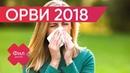 ОРВИ всё что нужно знать про болезнь Как лечить простуду Простуда лечение Как лечить ОРВИ