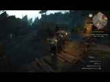 The Witcher Funny Bugs
