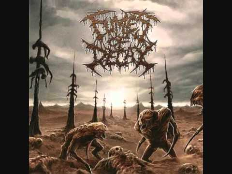 Fumes Of Decay - Burial Desecration
