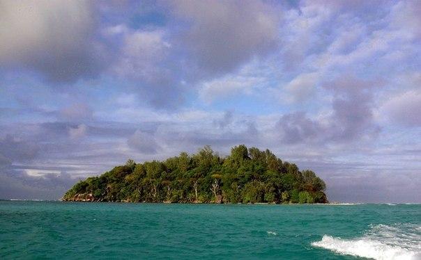 За 13 тысяч долларов англичанин Брендон Гримшоу купил крошечный необитаемый остров на Сейшелах и переехал туда навсегда.