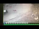 Человек против Собаки, супер бой!!!