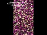 Бутоны роз сушеные 30 г цена 70 руб.
