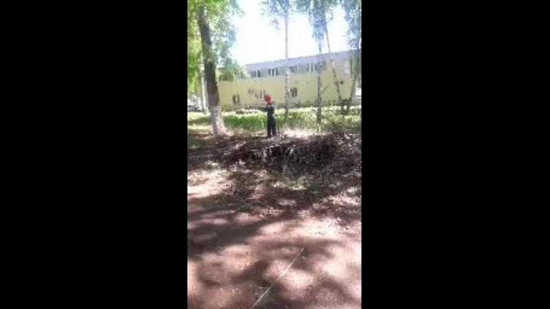 в ленинском парке субботник
