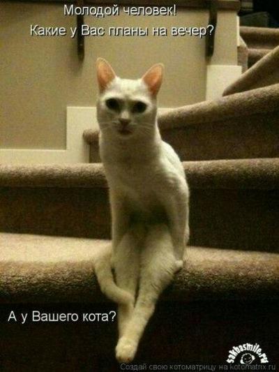 Аня Фролова, 27 апреля 1997, id220401708