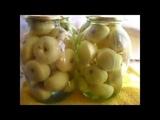 Консервация яблок белый налив это самый лучший способ сохранить вкусные и полезные плоды на зиму