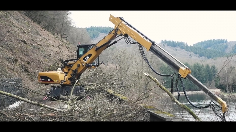 RECY FOREST ABBATAGE DARBES SUR FALAISE
