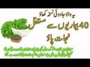 40 Imraz Ka Ajeeb Kamal Ka Mojzati Nuskha | Best Health Tips
