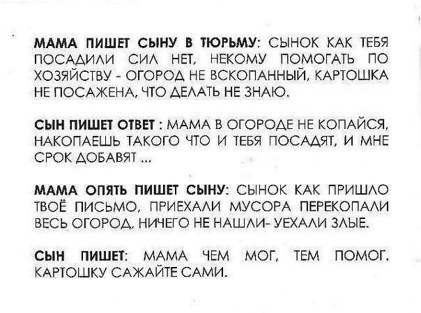 Фото №456251306 со страницы Данияра Мирзакаримова
