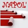 NAPOL' - ковры оптом и в розницу
