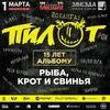 "1 марта 2019 г. Пилот в Самаре. клуб ""Звезда"""