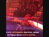 Во время циркового выступления тигр забился в судорогах и потерял сознание