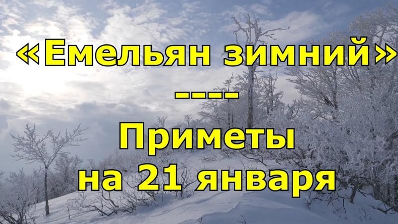 Приметы и поговорки на 21 января. Народный праздник «Емельян зимний». Именины.