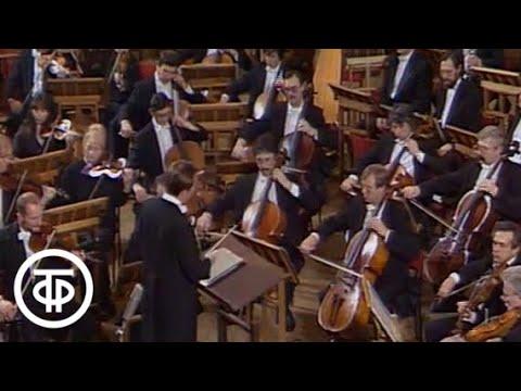 Концерт Российского национального симфонического оркестра п у М Плетнева RNO 1993