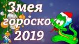 Гороскоп - 2019 для рожденных в год Змеи.
