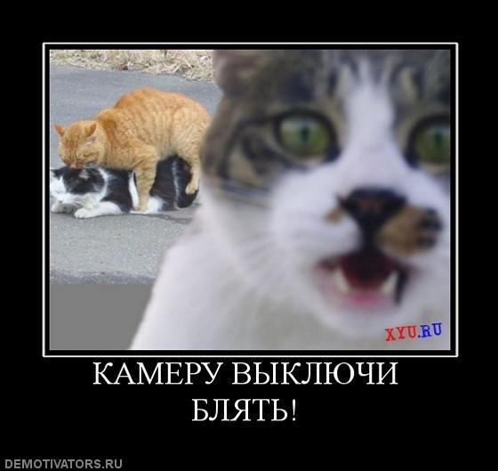 ... приколы ржачные приколы maincraft приколы: chrisunfis6499.narod.ru/385-smeshnie-prikoli-chitat-onlayn-chitat.html