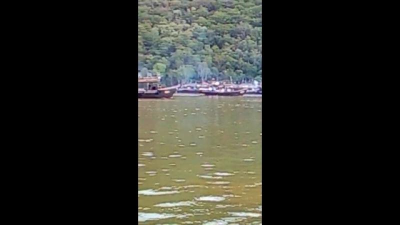 2018.09.06 - северокорейские лодки уходят из залива Ольга