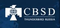 Thunderbird russia - фото 2