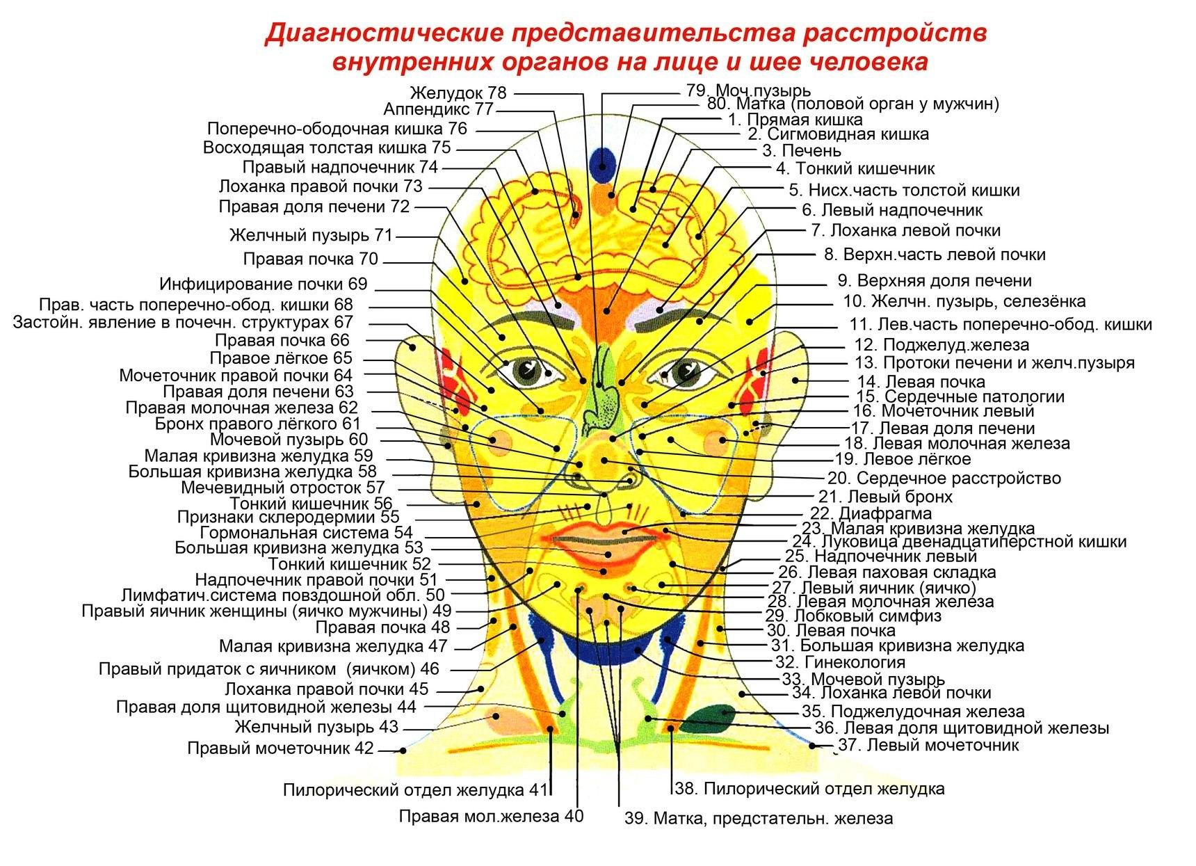 картинка массаж головы что определяет