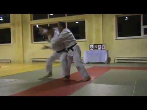 Мотоха Йошин рю Дзю Дзюцу. уширо увате дорі - кіме наге. (Jiu Jitsu seminar)