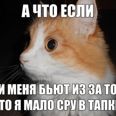 Артем Баранян, 9 ноября , Ростов-на-Дону, id102627076