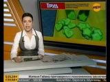 Ведущая РЕН ТВ захихикала в прямом эфире