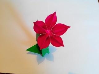 Цветок Карамбола оригами, Carambola Flower origami (Carmen Sprung)