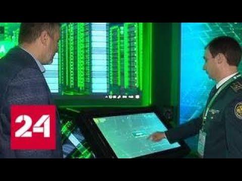 В России заработала электронная таможня Россия 24