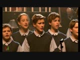Les Choristes - ''Vois Sur Ton Chemin'' (En Concert, 2006)