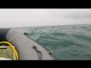 Баренцево море не спокойное, но очень красивое.