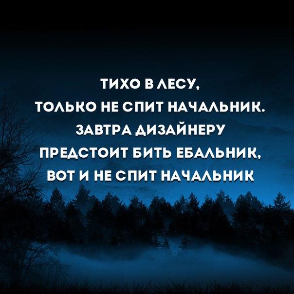 https://pp.vk.me/c617920/v617920532/16251/44hQuEfbaX8.jpg