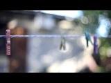 Тестирование объектива Гелиос-77М-4 1,8/50мм на фотоаппарате Canon EOS 5D Mark III
