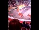 Иркутский цирк Выступление тигров