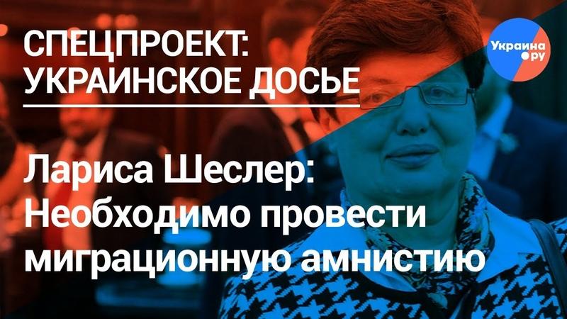 Лариса Шеслер в России необходимо провести миграционную амнистию