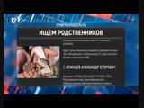 В Новгородской области нашли останки красноармейца из Омской области