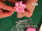 Урок №6 Украшение тортов  Kulinar24TV