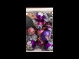 ассортимент 2019 - часть 3 - фиолетовая пудра