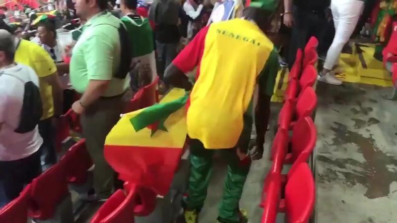 Болельщики Сенегала убирают за собой мусор на стадионе «Спартак» после победы над Польшей