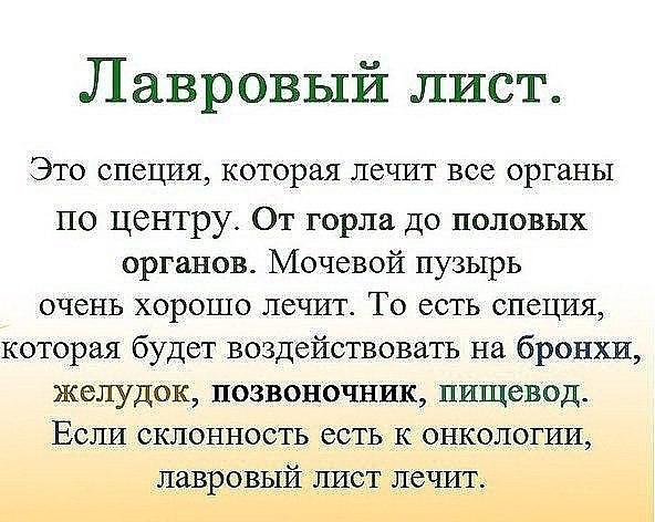 https://pp.userapi.com/c635101/v635101835/175ad/zXYIEv-ADLM.jpg