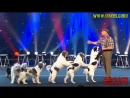 WOLFGANG LAUENBURGER DRESSAGE CHIENS LE PLUS GRAND CABARET DU MONDE