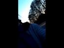 Лена Бочерова - Live